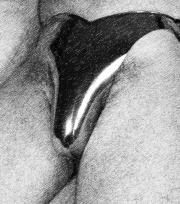männer sexuelle träume Weißenfels